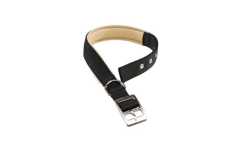 Daytona C20/43 Collar - Black